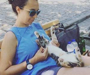 İstanbulun en mutlu kedileri kampuste olabilir ?? oje kredit : @dilhan muzuk kretit #bademagaci