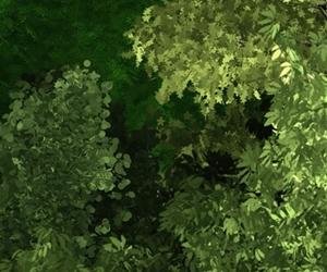 Dragos Kampüs, yeşilin her tonuna sahip doğasıyla seni bekliyor! #GelecekSehirde #SehirDragosta