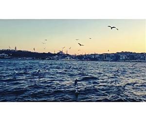 Mutlu Hafta Sonları O? #haftasonu #haftasonları #happy #nişantaşıüniversitesi #sadabadkampüsü  #istanbul #instagram #instagood #instadaily #bogaz #martılar #marti #deniz #sea #sea??