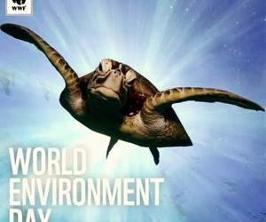 ??Yaşanacak tek bir Dünya var! Dünya Çevre Gününüz kutlu olsun. ?????? #WorldEnvironmentDay #dunyacevregunu #wwf #savetheworld #savetheoceans #savetheanimals